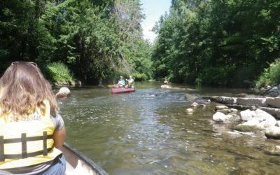 River Report 07/15/2019