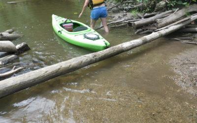 River Report